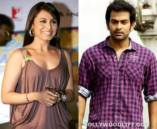 Rani Mukerji to romance south actor Prithviraj Sukumaran