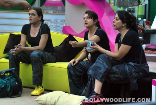 BIGG BOSS 5: Siddharth, Vida are friends again!