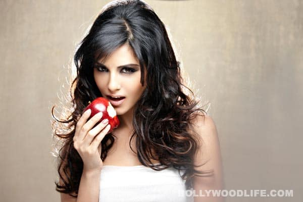 Will Sunny Leone become a successful Bollywood actor?