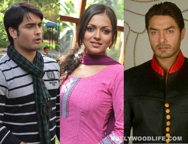 Madhubala Ek Ishq Ek Junoon: RK or Sultan – Who is better husband material?