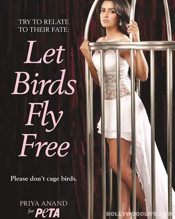 Fukrey star Priya Anand gets behind bars for PETA!