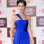 Is Nargis Fakhri taking her career seriously now?