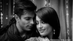 Asad and Zoya to marry in Qubool Hai
