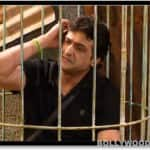 Bigg Boss 7: Why was Armaan Kohli punished?