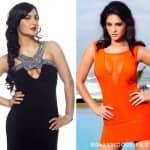 Is Elli Avram the new Sunny Leone?