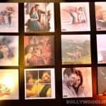 Ravi Dubey-Sargun Mehta, Aamir Ali-Sanjeeda Sheikh feature in GR8! Love Stories Calendar 2014