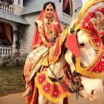 Ekk Nayi Pehchaan: Sakshi and Karan go horse riding on their wedding day!