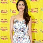 How did Vaani Kapoor get the South remake of Band Baaja Baaraat?