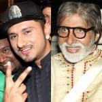 Will Yo Yo Honey Singh retire after working with Amitabh Bachchan?