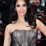 Will Mallika Sherawat up the sex-quotient in Hawaii Five-0?