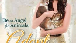 Alia Bhatt turns an angel for animals, poses for PETA