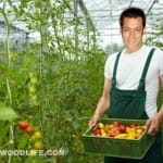 Salman Khan - Bollywood superstar turns a gardener!