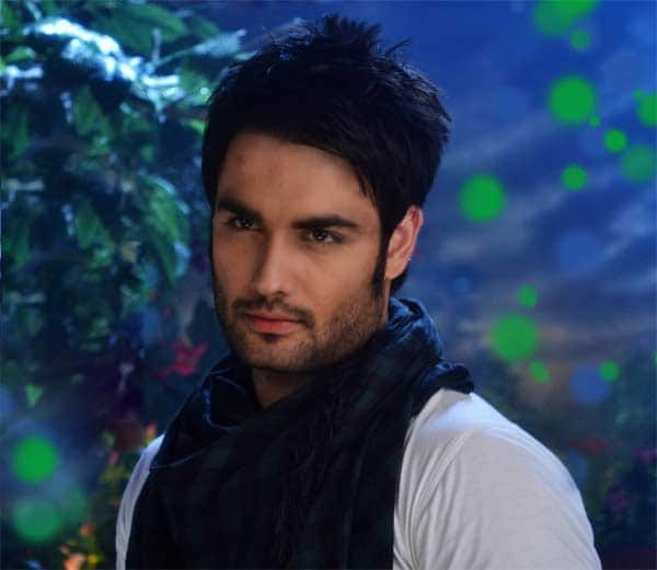 Vivian DSena: I don't want to see myself as the TRP booster of Madhubala