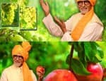 Amitabh Bachchan endorses a campaign for free, again!