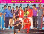 Will the Box Cricket League 2014 be another Bigg Boss?