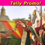 Maharana Pratap first look: Ssharad Malhotra-Rachana Parulkar play the adult Pratap and Ajabde
