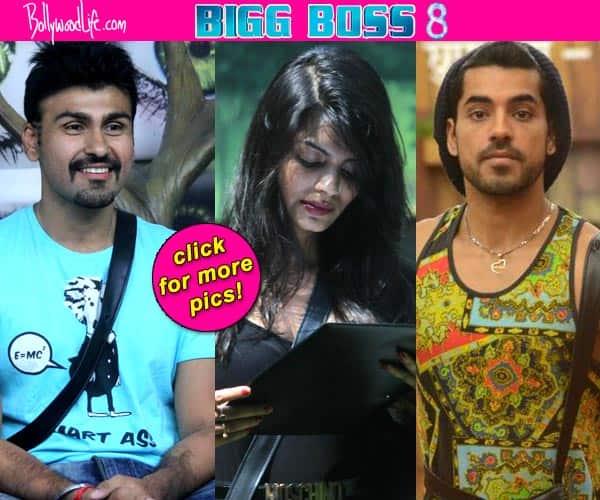 Bigg Boss 8: What are Gautam Gulati  Sonali Raut, Arya Babbar, Natasa Stankovic's typical personality traits in the show?