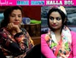 Bigg Boss Halla Bol: Did Dimpy Ganguly call Sambhavna Seth a 'prostitute'?Vote!