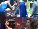 Karishma Tanna-Gautam Gulati, Ali Quli Mirza-Ajaz Khan, Dimpy Ganguly-Sambhavna Seth: Contestants who got involved in the biggest of fights inside the Bigg Boss house!
