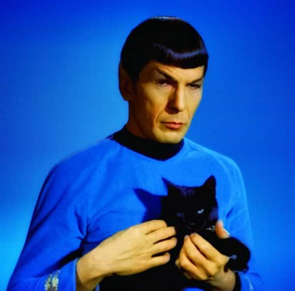 Similar situation. Leonard nimoy as spock congratulate, very
