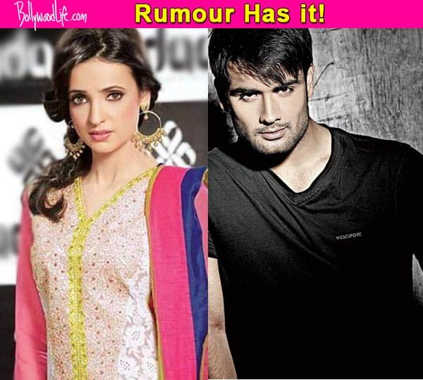 Sanaya Irani roped in opposite Vivian DSena in Colors' next venture?