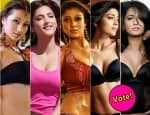 Shruti Haasan, Tamannaah, Samantha, Trisha, Anushka Shetty, Nayanthara or Shriya Saran – Who is the ultimate hottie of South?