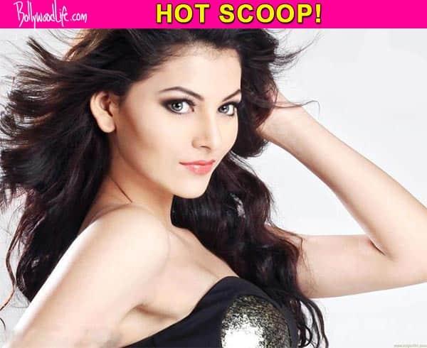 Exclusive : Urvashi Rautela to play Radha in the Ram Lakhan remake?