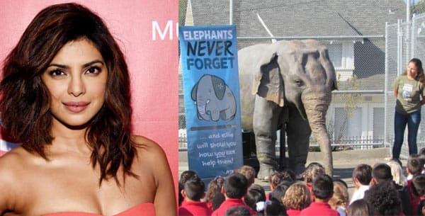 Quantico star Priyanka Chopra lends her voice to a mechanical elephant