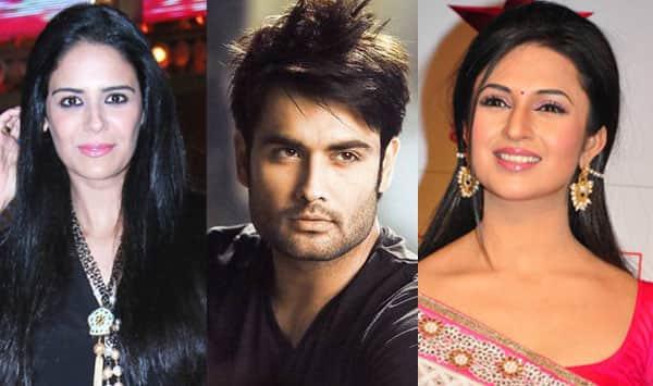 Mona Singh, Divyanka Tripathi, Vivian Dsena: TV celebs and their Diwali plans