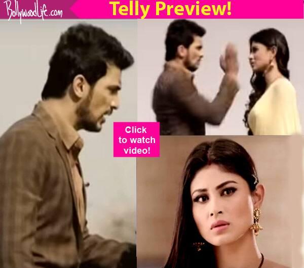 Naagin: Ritik SLAPS Shivanya for accusing his parents of murder – watchvideo!