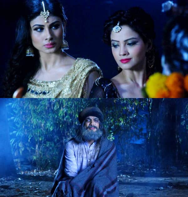 Naagin episode review: Shivanya (Mouni Roy) and Shesha (Adaa Khan) learn the identity of the fifth killer!