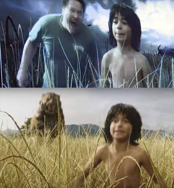 Mowgli-Attacked
