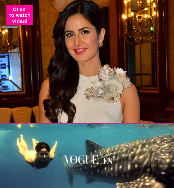 Katrina Kaif has whale of a time, quite literally! – watch video