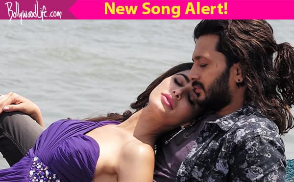 Banjo song Udan Choo: Riteish Deshmukh and Nargis Fakhri's dreamy love will get you hooked to this track!
