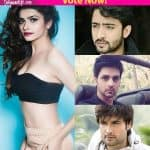 Shaheer Sheikh, Shakti Arora or Vivian Dsena – which TV hunk would look best with Prachi Desai in a film?