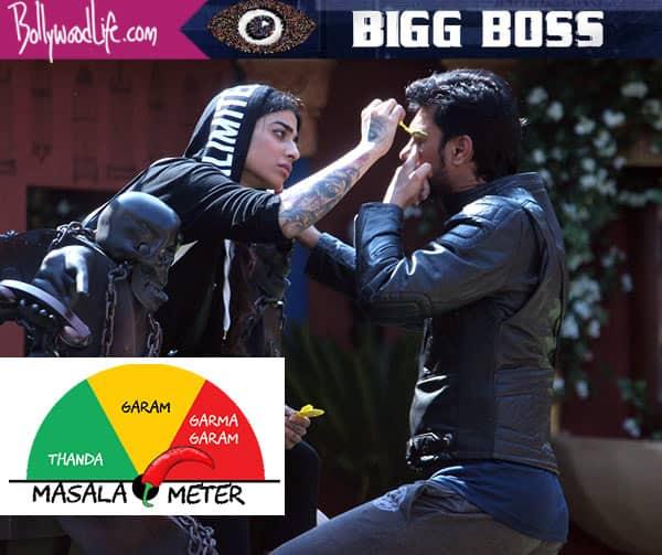 Bigg Boss 10 7th November 2016 Episode 23 LIVE updates: Bani J destroys best friend Gauahar Khan's gift to save Gaurav Chopra from nominations