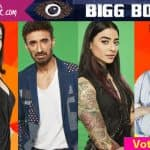 Bigg Boss 10: Bani J, Rahul Dev, Elena Kazan or Jason  Shah - who should be evicted this week?