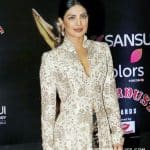 Priyanka Chopra's next Bollywood film to be directed by Siddharth Anand?