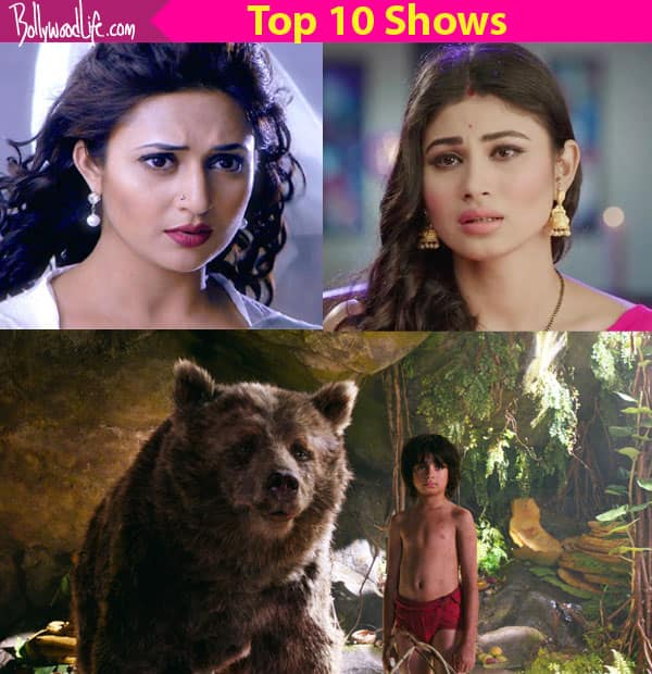 Kumkum Bhagya and Shakti – Astitva Ke Ehsaas Ki drop out of the Top 5, as per the BARC Report Week 48 – check out Top 10 shows