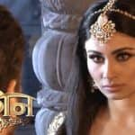 Naagin 2 22nd January 2017, written update of full episode: Shivangi finds out about Mahish's real form as he kills his guru