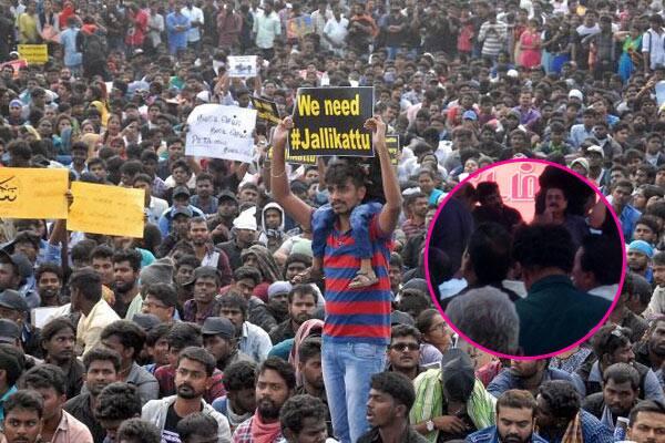 Nadigar Sangam members Ajith, Suriya, Karthi,Trisha want no media coverage of their Pro-Jallikattu protest