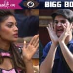 Bigg Boss 10 contestants Lopamudra Raut and Rohan Mehra will be EMBARRASSED to see this video