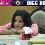 Confirmed! Not Rohan Mehra, it's Mona Lisa, who has been evicted from Bigg Boss 10