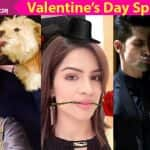 Valentine's Day Special: Here's how Ravi Dubey, Shikha Singh, Ridhi Dogra and other celebrities are bringing in love