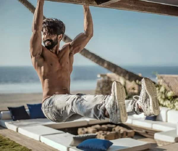 Shahid Kapoor hot pics (6)