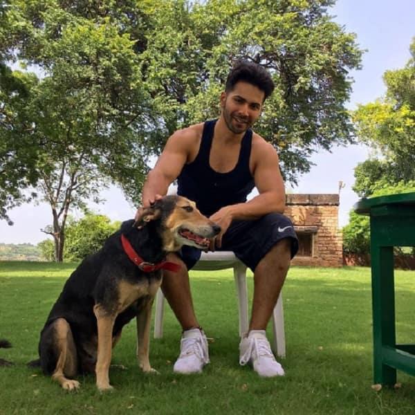 Varun Dhawan monday motivation 5