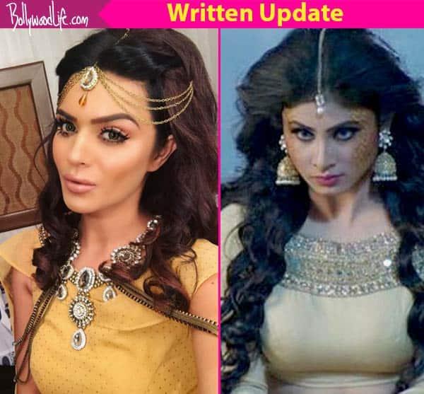 Naagin 2 26 March 2017, Written Update of Full Episode: Shivangi kills Avantika