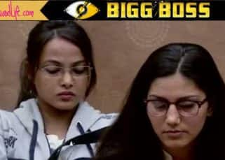 Bigg Boss 11 20th October 2017 Episode 20 preview: Vikas Gupta and Sapna Choudhary get into a heated argument over the captaincy task