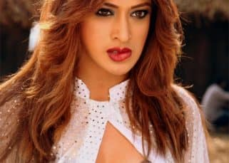 Pahlaj Nihalani claims that Julie 2 is based on a well-known actress' life
