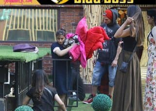 Bigg Boss 11 17th November 2017 Episode 48 Live updates: Bandgi becomes the new captain, Ben wants Priyank to confess his feelings for her